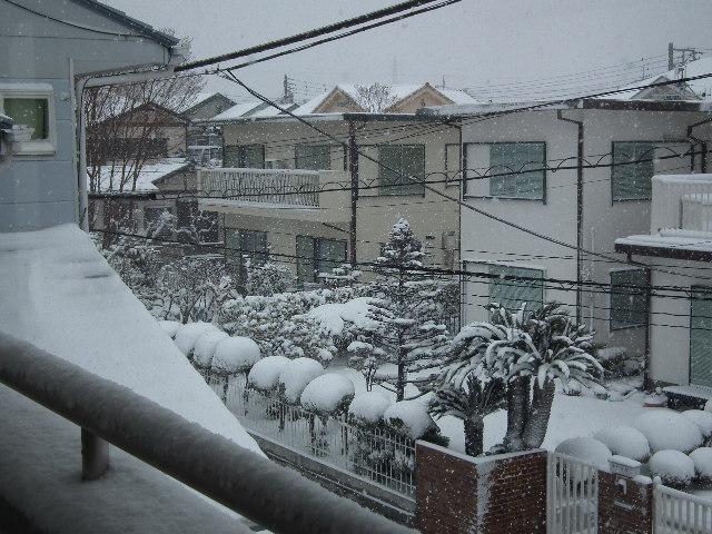 「本日の大雪」の画像検索結果